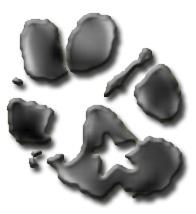 Dogstar Rocks